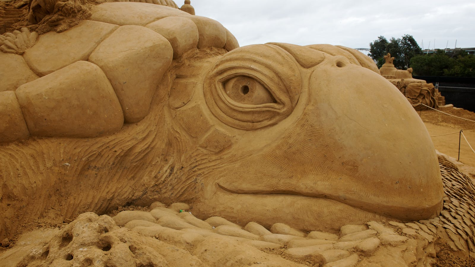 """OCEAN"" A Sand Sculpting Adventure"