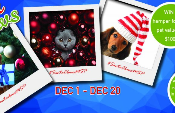 Santa Claws Pet Photo Competition